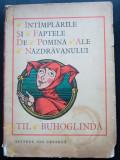 Întâmplările și faptele de pomină ale năzdrăvanului Til Buhoglindă