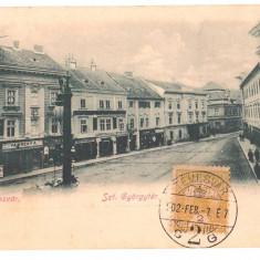 SV * Romania  TIMISOARA  *  LITHO  *  STRADA  SFANTUL  GHEORGHE  1902