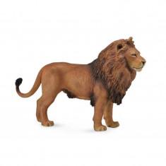 Figurina Leu African L Collecta, 14 x 9 cm