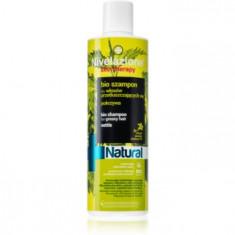 Farmona Nivelazione Natural șampon pentru păr gras