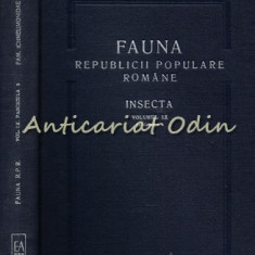Fauna R. P. R. Insecta (III). Subfam. Phaeogeninae si Alomyinae