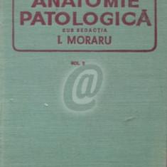 Anatomie patologica, vol. II (Ed. Medicala)