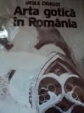 ARTA GOTICA IN ROMANIA-VASILE DRAGUT,BUC.1979