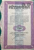 Lot Actiuni Nitrogen 1942