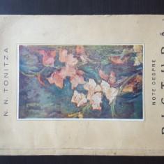 NOTE DESPRE PICTURA - N. N.TONITZA , CU O PREZENTARE - FR. SIRATO ,1947
