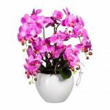 Cumpara ieftin Aranjament in ghiveci ceramic, Orhidee Phalaenopsis Roz inchis, H56 cm