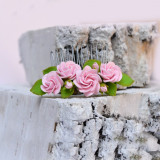 Pieptene roz pal