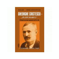 Gheorghe Cristescu. Plapumarul - Oana Ilie, Cornel Constantin Ilie