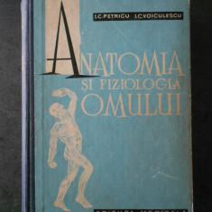 I. C. PETRICU, I. C. VOICULESCU - ANATOMIA SI FIZIOLOGIA OMULUI