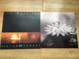 VAN MORRISON - AVALON SUNSET (1989,POLYDOR,UK) vinil vinyl