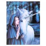 Tablou canvas zana si unicorn, Alinare 19x25cm Anne Stokes