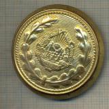 Y 1868 PAFTA MILITARA -PENTRU CENTURA DE CEREMONIE -RSR -PENTRU COLECTIONARI