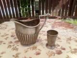 Canita argintata/