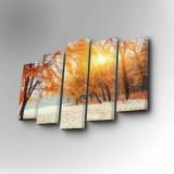 Tablou decorativ pe panza Art Five, 5 Piese, 747AFV1232, Multicolor