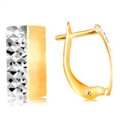 Cercei din aur de 14K - bandă din aur alb și galben