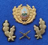 Insigna Militara Ofiter ARTILERIE - Coifura - insemn cascheta - SEMN DE ARMA RSR