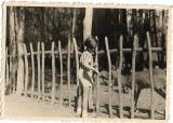 Poza fetita si caprioara 1944 perioada monarhista