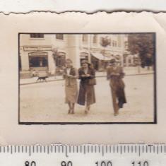 bnk foto - Sinaia - Parc Hotel - 1937 - dimensiuni mici