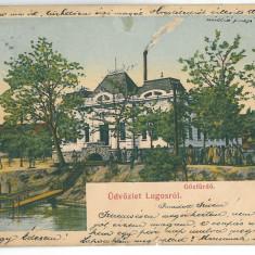 4485 - LUGOJ, Timis, Baia Comunala, Romania - old postcard - used - 1905, Circulata, Printata