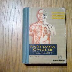 ANATOMIA OMULUI  -  V. Ranga, T. Seicaru, F. Alexe -  Medicala,  1962, 685 p.