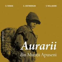 Aurarii din Munţii Apuseni, de B. Roman, A. Sîntimbrean, V. Wollman