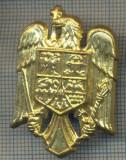 Y 1549 INSIGNA-MILITARA  -EMBLEMA COIFURA -PENTRU COLECTIONARI