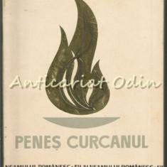 Penes Curcanul (Sergentul Constantin Turcanu) - Gavrila Sacadat