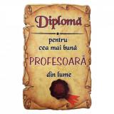 Magnet Diploma pentru Cea mai buna PROFESOARA din lume, lemn, Alexer