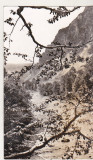bnk cp Valea Putnei la Lepsa - Vedere - circulata