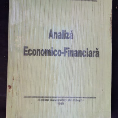 ANALIZA ECONOMICO FINANCIARA PANA ION