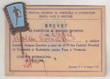 Bnk ins Romania - insigna Festivalul Tineretului Bucuresti 1953 cu brevet, Romania de la 1950