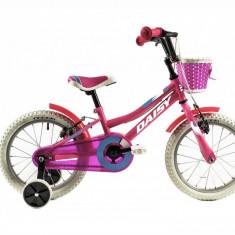 Bicicleta Copii DHS 1604 Roz 16