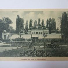 Cluj Napoca-Chioscul din parc,carte postala necircul/reclama bere Ursus anii 20