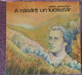 Cumpara ieftin A rasarit un luceafar, Mircea Stefanescu, disc vinil, Alte tipuri suport, Altele