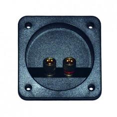 Conector boxa 2 terminale gold
