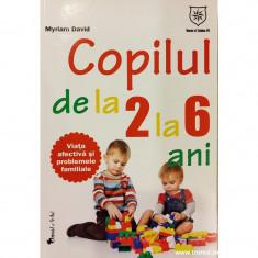 Copilul de la 2 la 6 ani