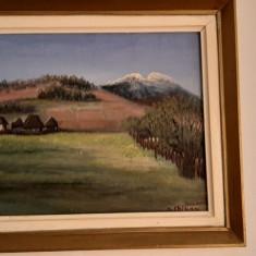 Tablou pictura in ulei; Autor Maria Chilian; Dimensiuni: 45x40