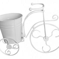 Bicicleta decorativa FERONYA cu 1 ghiveci pentru flori MN011622 Raki