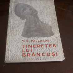 TINERETEA LUI BRANCUSI - V. G. Paleolog - 1967, 229 p.+ 61 anexe cu operele lui