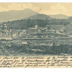 681 - PREDEAL, Panorama, Romania - Double old postcard - used - 1903, Circulata, Printata