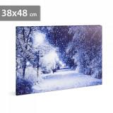 Tablou cu Iluminare LED, Peisaj de Iarna Alee Inzapezita, Baterii 2xAA, 38x48cm