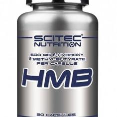 HMB, 500 g, 180 capsule