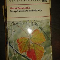 Das pflanzliche geheimnis – Horst Reinbothe