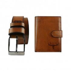 Set cadou portofel si curea PL291