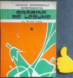 Calauza gradinarului intreprinzator, vol. 1 Gradina de legume  Nicolae Lupsa