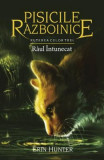 Pisicile Razboinice Vol.14: Raul intunecat - Erin Hunter