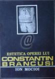 Estetica operei lui Constatin Brancusi