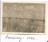 A1228 Sirokine Crimeea 1942 frontul de est