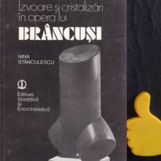 Izvoare si cristalizari in opera lui Brancusi Nina Stanculescu