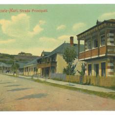 4659 - OCNELE-MARI, Valcea, Romania - old postcard - used - 1918